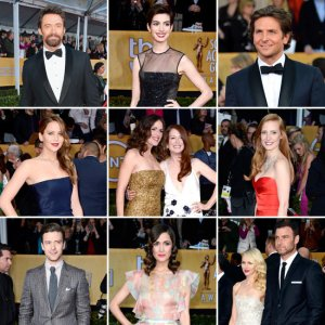2013-SAG-Awards-Red-Carpet-Celebrity-Pictures