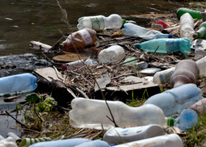 water-bottle-pollution