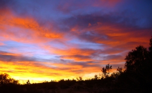 California_High_Desert_Sunrise