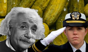 einstein-pickles-salutes