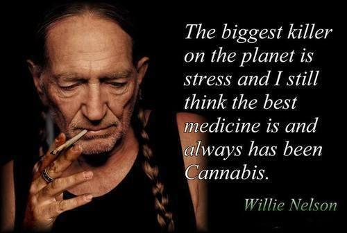 Willie-Nelson-weed-strain