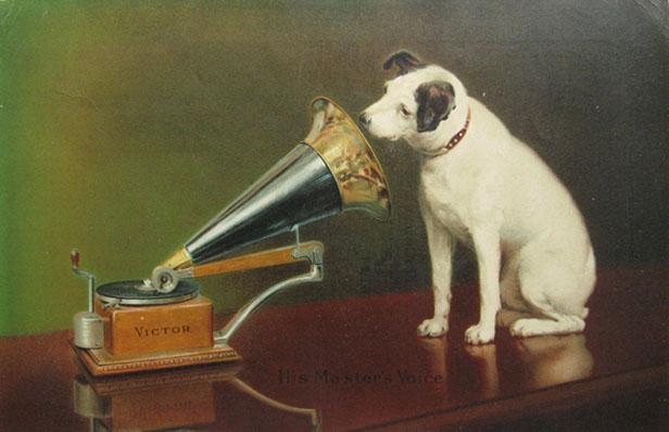 victor_dog.jpg