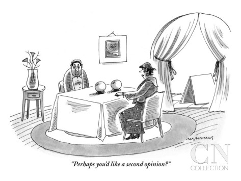mick-stevens-perhaps-you-d-like-a-second-opinion-new-yorker-cartoon